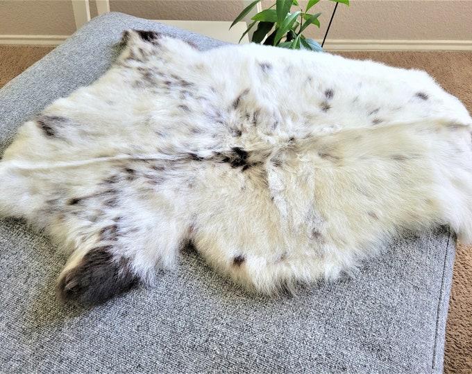 Sheepskin Pelt,  Sheepskin Throw, Soft White Brown Wool, 20 x 32 in.