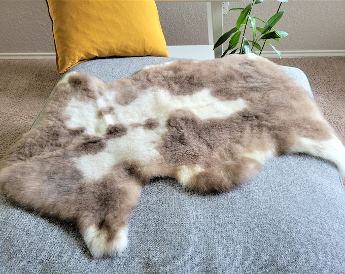 BESTSELLER Beautiful Brown White Genuine SHEEPSKIN rug | Natural Humanely Sourced |  Scandinavian Style Rustic Home Decor, 25 x 37 in.
