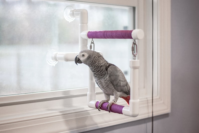 Shower/Window Perch W/ Optional Swing Medium image 2