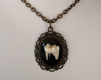 Real Raccoon Tooth Pendant, 124