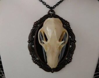 Real Bat Skull Pendant, 001