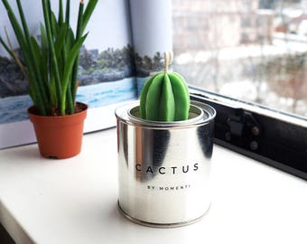Cactus in a tin #L Handmade Soy Candle