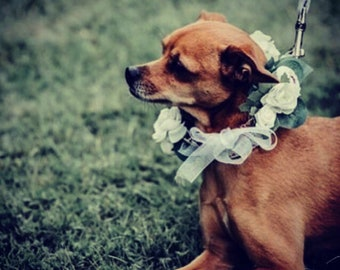 White  Rose Floral Wedding Dog Collar Wedding Dog Canine Garland Adornment Flower Crown for Dogs