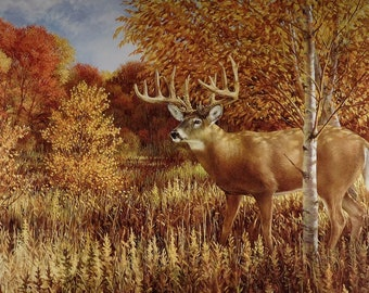 Ron VanGilder When Color is King whitetail deer hunting limited edition wildlife art print lithograph buck print