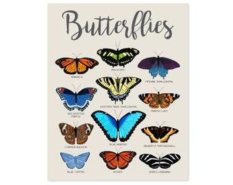 Butterfly Poster Butterfly Print Butterfly Wall Art Butterfly Art Butterfly Decor Educational Posters for Kids Poster for Kids Room Decor