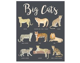 Big Cats Poster Educational Posters Kids Safari Nursery Decor Safari Nursery Art Safari Animals Safari Print Cat Poster Educational Prints