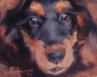Pet Portraits, Original Dog Oil Painting, Doberman, Animal Painting, Original Art, 6x6 in