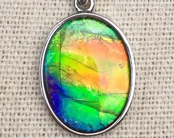 Ammolite Pendant - Multi-Color