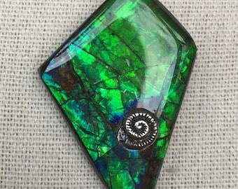 Ammolite Pendant, Ammonite Accent