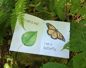 Summer Senses | Little Nature Reader | Homeschool Printable
