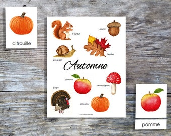 French Autumn Mini Poster and Cards | Homeschool Printable | 3-Part Cards