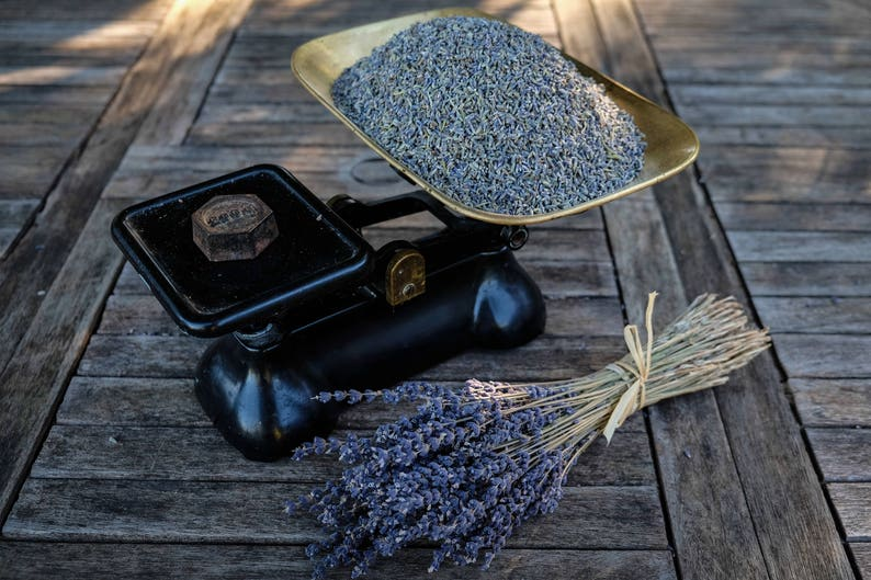 Dried Scented French Lavender Flowers