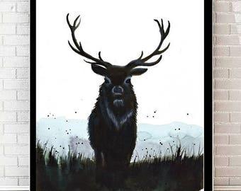 Deer - Print  Poster