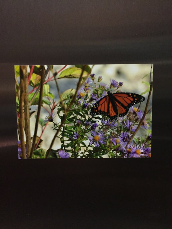 Digital photographic print with magnetic backing. (Photo magnet)