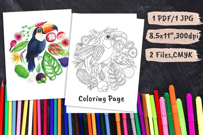 Adult Coloring Sheets Pdf Tropical Plants Kids Activity Color Book Jpeg Ipad Pro Procreate 8.5  x 11