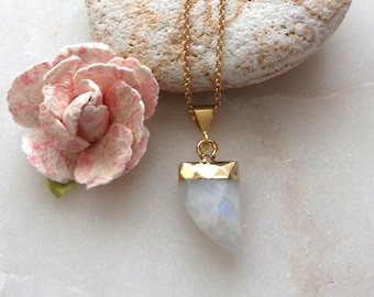 Moonstone Horn Necklace 18k Gold