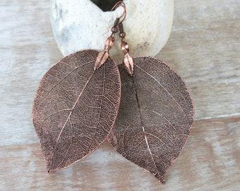 Real Leaf Earrings Copper Dipped Natural Leaf Earring