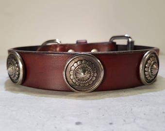 SALE: Brown patiné leather dog collar with silver conchos.