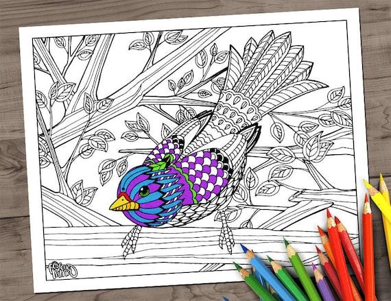 Gorrión. Página para colorear para descargar | Etsy