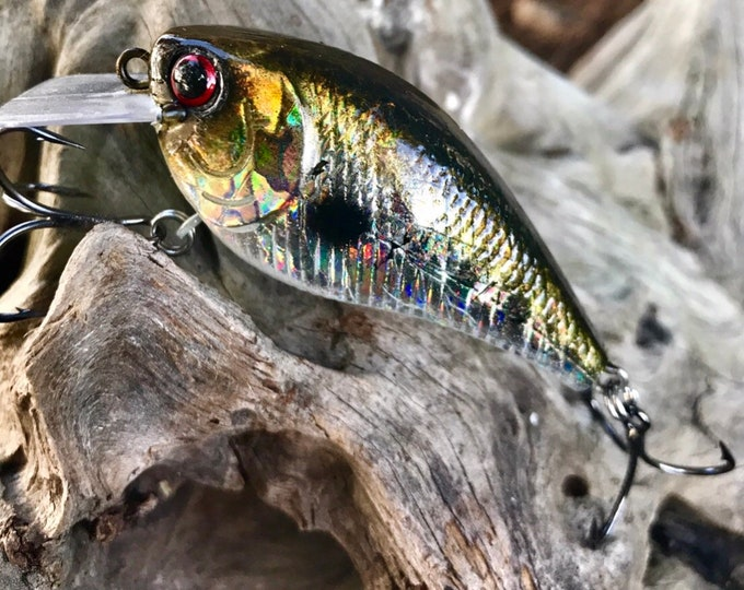 Custom Painted BIG MAXX HOLOGRAPHIC 1.5 Shallow Diver Crankbait