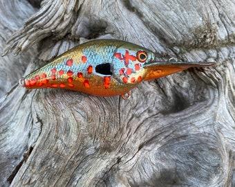 Custom Painted FRED A STARE 1.5dd Medium Diver Crankbait