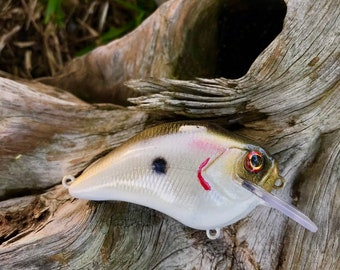 Custom Painted MOJO Shallow Diver Crankbait