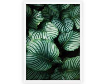 Tropical Leaves Art Print, Digital Prints, Tropical Leaf Print, Digital Download, Palm Digital Print, Tropical Printable Art Banana Leaf
