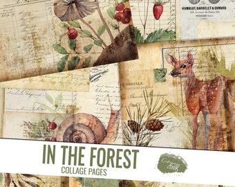 Forest Junk Journal Kit, In the Forest Collage Pages, Junk Journal Printable, Vintage Junk Journal Digi Kit, Vintage Ephemera, Woods