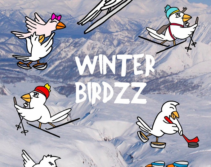 COOL WINTER BIRDZZ - Kombi all 7 Birdzz - the cool winter sports birds