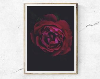 floral wallpaper downloadable print rose print etsy