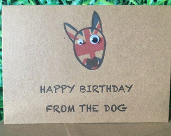 English Bull Terrier Happy Birthday from the Dog