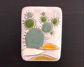 Magnet cactus