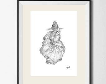 Seamese fighting fish drawing - graphite pencil illustration - print on Canson paper 280 gr