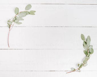 Download Free Green Eucalyptus on White Wood - Green Leaf, Spring Flower, Wedding Flower, Wedding Photo, Digital Image, Styled Photography, Styled Stock PSD Template