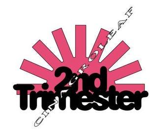 2nd Trimester Pregnancy Iron