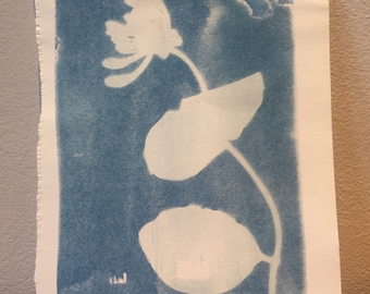 Handmade Cyanotype Nature Print: London Series