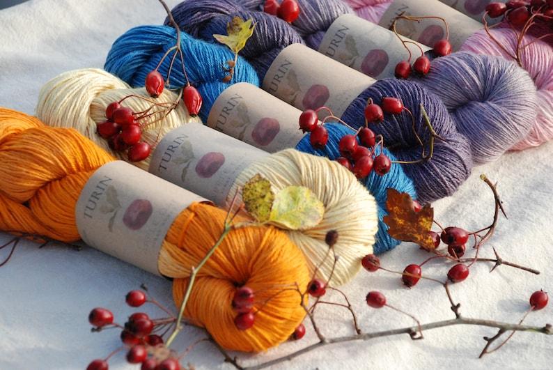 Turin BIRCHWOOD ~ Naturally dyed RamieSilk and wool sock yarn ~ 4ply