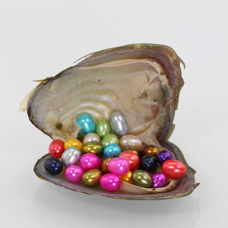 100 pcs Twins 7-8mm AAAA Oval Freshwater pearl oysters with pearls,oyster twins pearl,Birthday birthday party,birthday gift  MX001