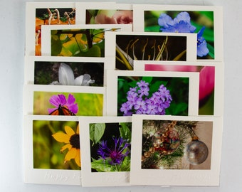 Assorted Hand Embossed Greeting Cards with Original Photographs, Variety of Sentiments, Blank Inside
