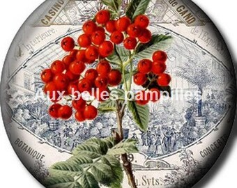 Round cabochon glue resin 25 mm - beautiful berries (1309) - nature, flower