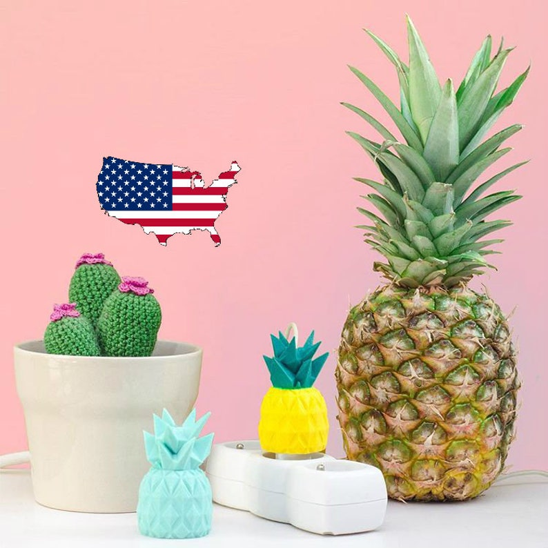 USA  Shell pineapple for American cube charger / gift idea image 0