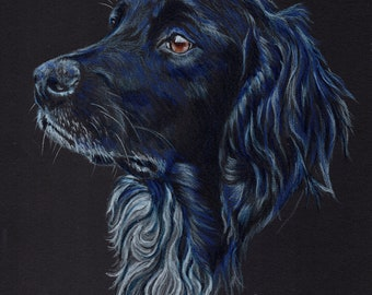 Munsterlander blank card. Print of colour pencil drawing by Sarah Caisey