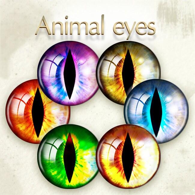 Digital Cat/'s Eyes Animal Printable Irises Realistic Lion/'s Eyes Natural Irises Kitten Toy/'s  Pupils Download for Mini Bottle Caps Pendants