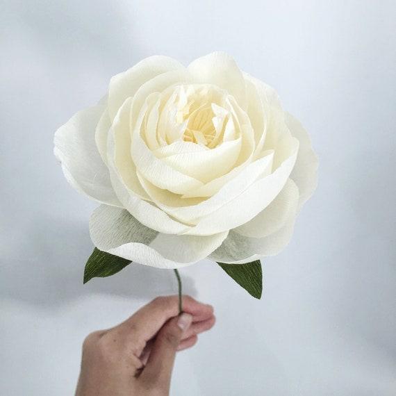 Crepe Paper Peony--single stem