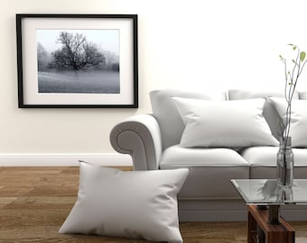 large Format Fine art Print Photography black and white