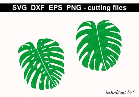 Monstera Leaves Svg Cutting Files Silhouette Leaves Etsy