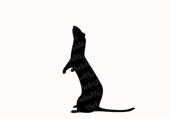 Ferret silhouette image