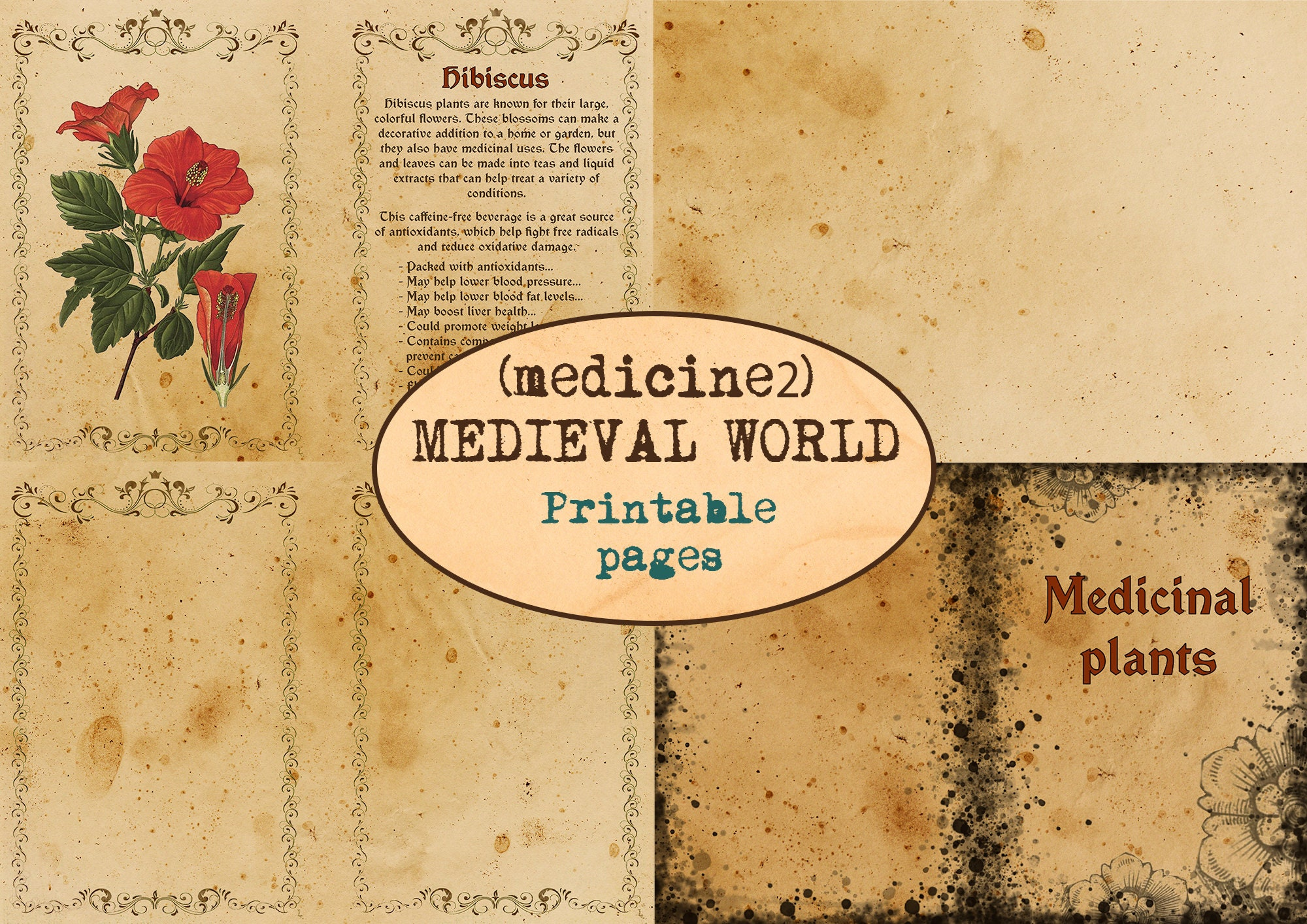 MEDIEVAL MEDICINE WORLD(2) 18 pages / Apothecary book / Printable journaling pages / Vintage ephemera / Wild herbs / Junk journal