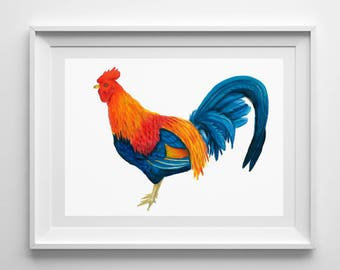 Colorful Rooster// Gicleé Fine Art Print