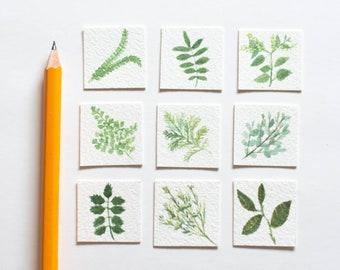 Set of Tiny Watercolor Originals, Tiny Paintings, Mini Paintings, Tiny Painting, Miniature Painting, Miniature Art, Original Watercolor